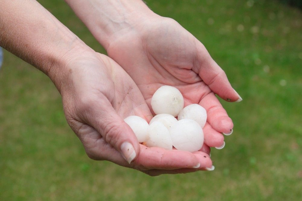 Protect your Colorado home from golf ball size hail with ArmourShield Impact Resistant Shingles.