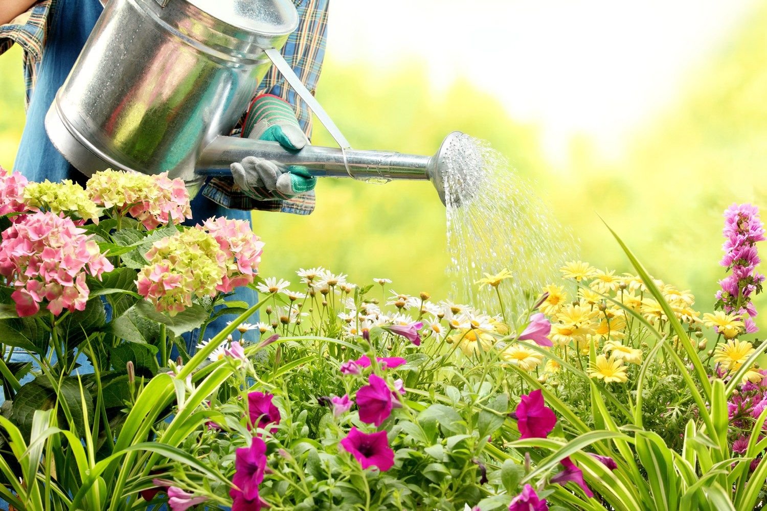 If you're still using a good old fashioned watering can to tend to your garden, then you are already one step ahead of the game for fall home preparations