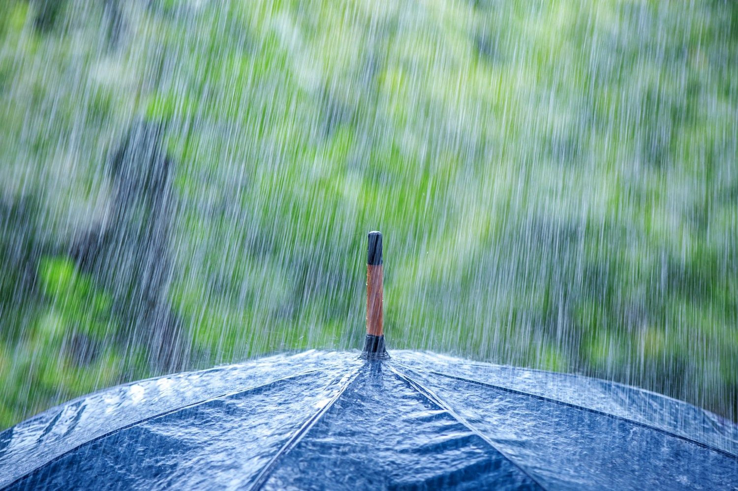 Preventing moisture damage to your Colorado residence or business